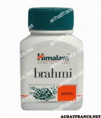 brahmi image